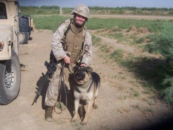 rex chien militaire
