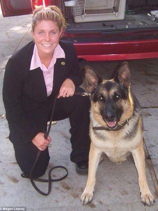 chien militaire pétition
