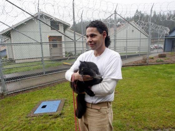 chat ami prisonnier