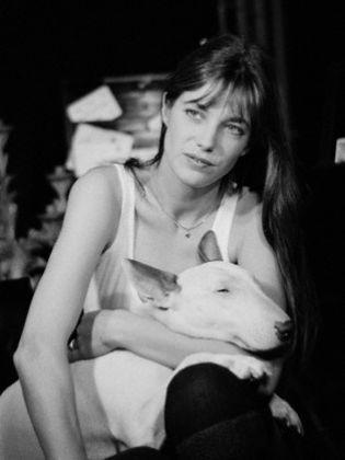 Jane Birkin, star, chien