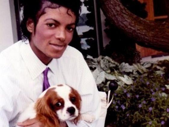 King Charles Spaniel, star, Michael Jackson