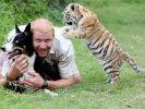 gardien parc chien tigre