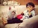un petit garçon et son chien sont les meilleurs amis du monde