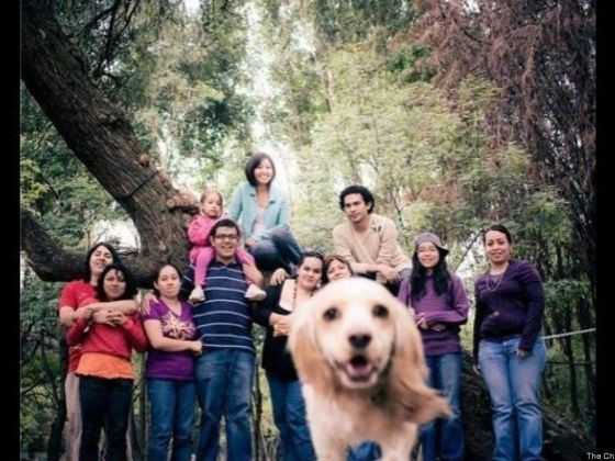 photos animaux chien photobombing