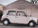 photos chiens voiture solitude abandon