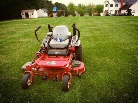 tondre la pelouse o est mon cochon d 39 inde ou les. Black Bedroom Furniture Sets. Home Design Ideas