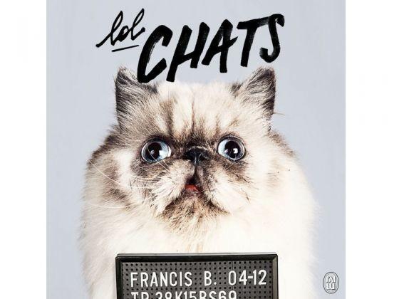 livre chats