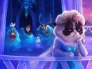 Grumpy Cat Frozen