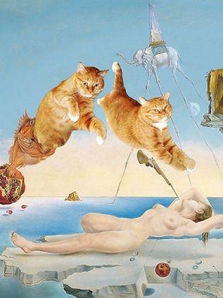 Rêve de Dali avec chat
