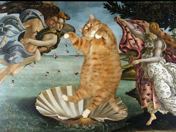 Naissance de Vénus avec chat