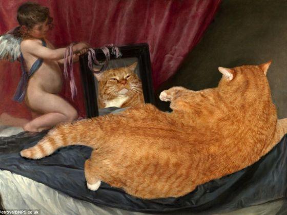 V nus au miroir zarathustra le gros chat roux remet la for Venus au miroir