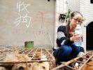 chien chine sauvetage restaurant maltraitance