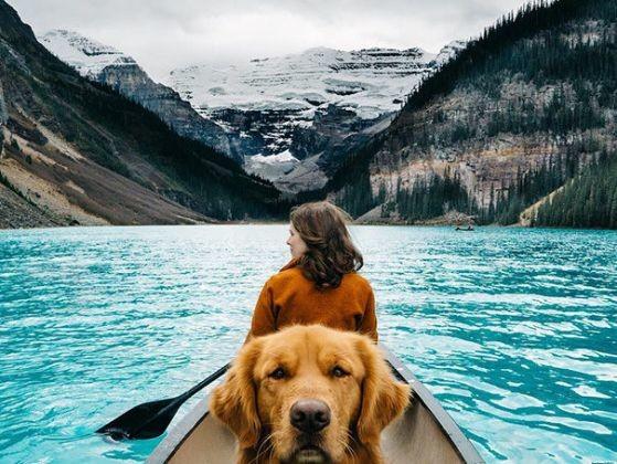 Aspen fait même du kayak - Aspen, l'adorable golden
