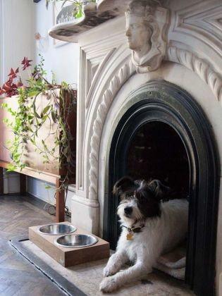 Une niche dans la chemin e 19 niches originales que vous for Acheter piscine pour chien