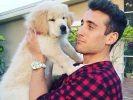 hommes sexy avec chiens trop mignons
