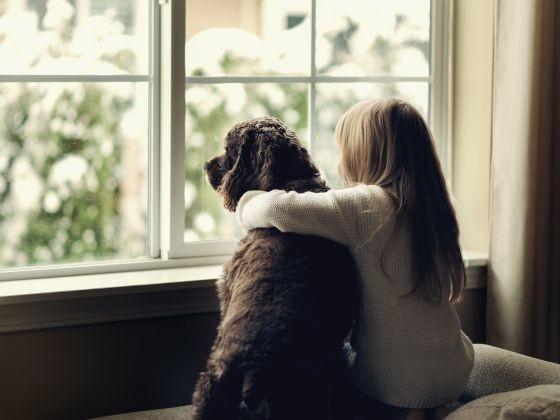 Cette routine contribue à l'épanouissement du chien