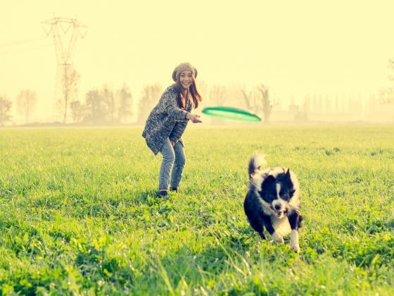 Jouer avec son chien frisbee