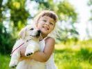 golden retriever s'entend bien avec enfants