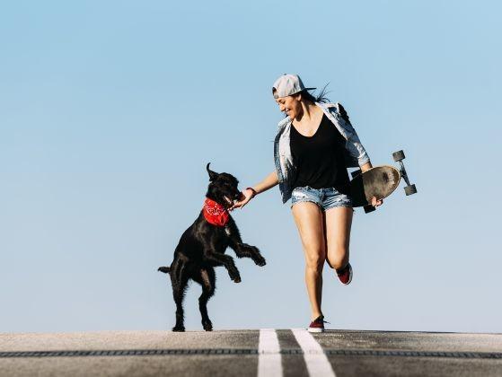 activité physique chien complicité