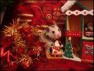 photo hamster décor noel