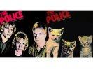 pochette album police chat