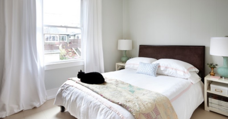 6 étapes pour préparer sa maison à accueillir un chat comme il se doit