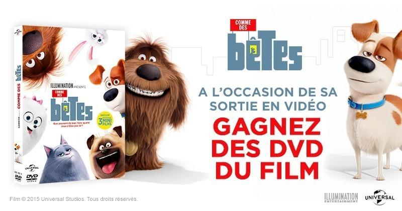 Gagnez votre DVD de « Comme des bêtes » !