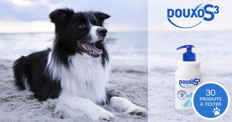 Testez le DOUXO S3 CARE Shampooing avec votre chien