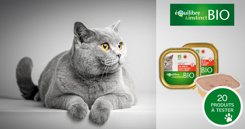 Testez les terrines BIO au bœuf Équilibre & Instinct avec votre chat