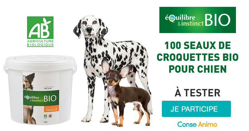 Testez gratuitement les croquettes Equilibre & Instinct BIO avec votre chien