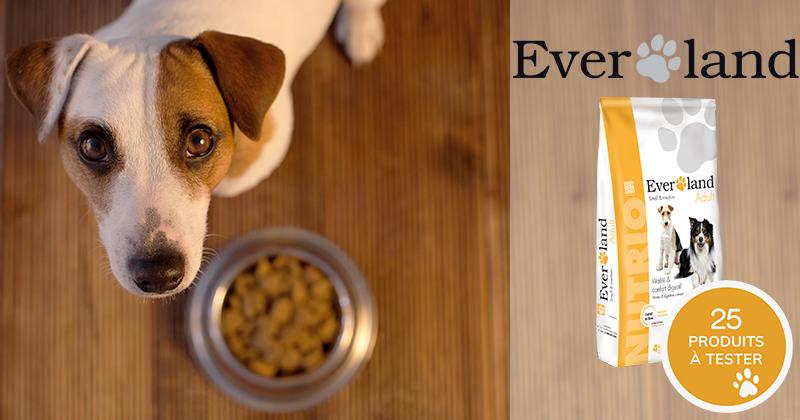 Testez gratuitement les croquettes NUTRIO Adult Small & Toy avec votre chien adulte de moins de 15 kg