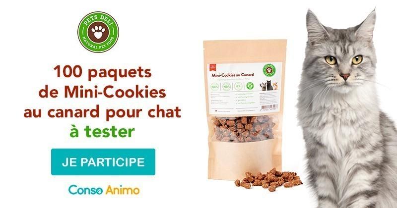 Testez les Mini-Cookies pour chat Pets Deli !