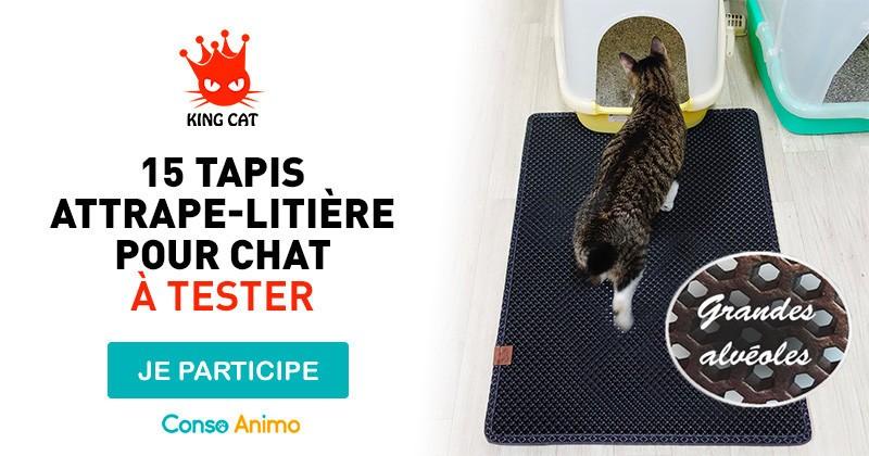 testez le tapis attrape liti re pour chat de king cat conso wamiz. Black Bedroom Furniture Sets. Home Design Ideas