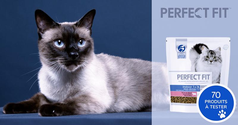 Testez les croquettes INDOOR 1+ PERFECT FIT avec votre chat