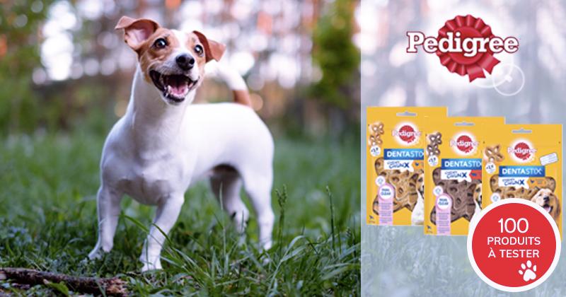 Testez les Dentastix™ Chewy Chunx PEDIGREE® avec votre chien !