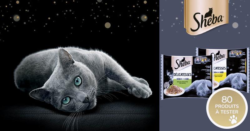 Testez les SHEBA® Délicatesses en gelée sélection Terre & Mer OU à la Volaille pour chats !