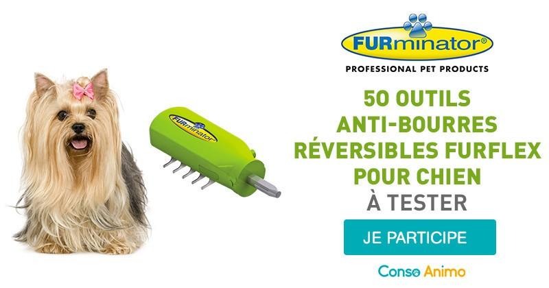Testez l'outil anti-bourres réversible FURflex pourvotre chien !