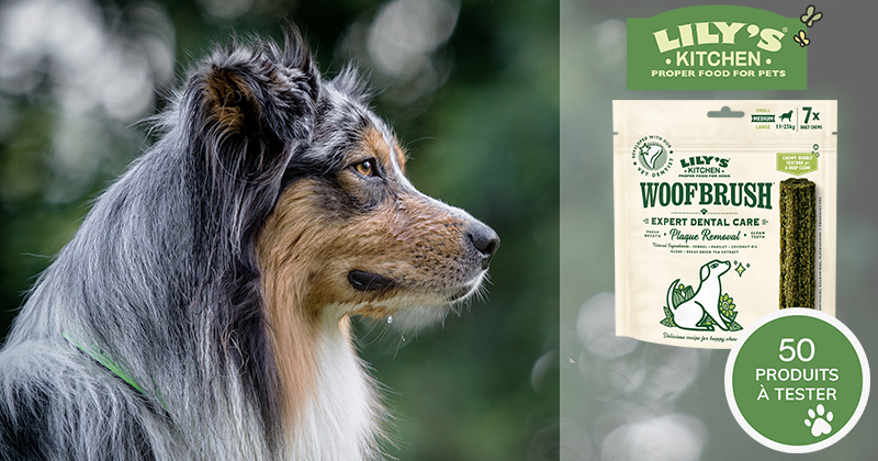 Testez les friandises dentaires Woofbrush avec votre chien