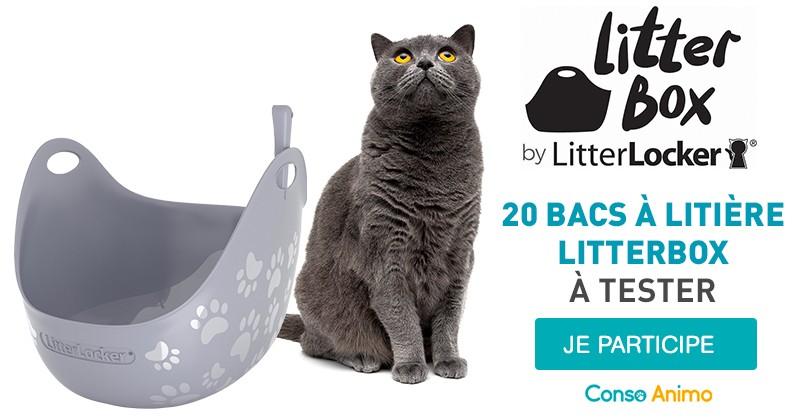 Testez le bac à litière LitterBox