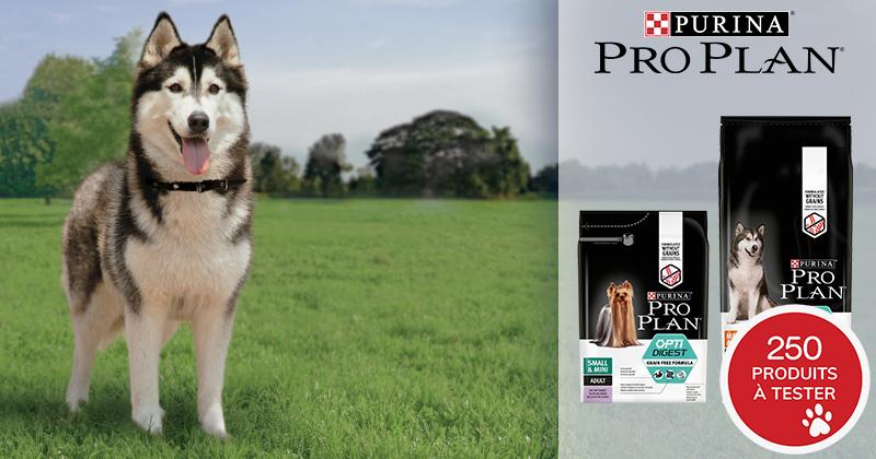 Testez PRO PLAN® Optidigest® Grain Free Riche en Dinde avec votre chien