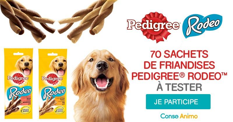 Testez les friandises Pedigree Rodeo avec votre chien