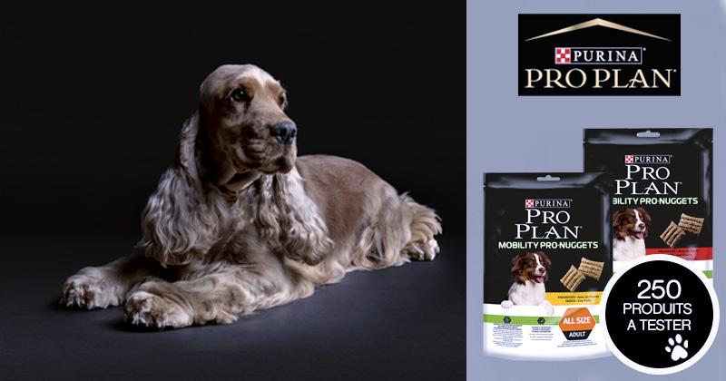 Testez les PURINA® PRO PLAN® MOBILITY PRO NUGGETS avec votre chien