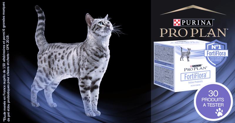 Testez les PURINA® PRO PLAN® FortiFlora® Probiotique avec votre chat