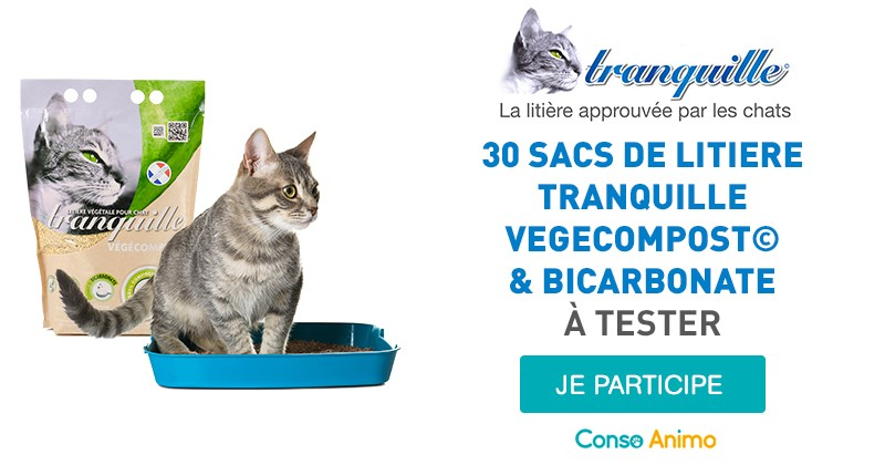 litiere chat bicarbonate