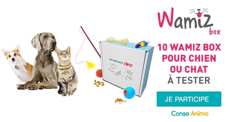 Testez la Wamiz Box avec votre chien ou votre chat !