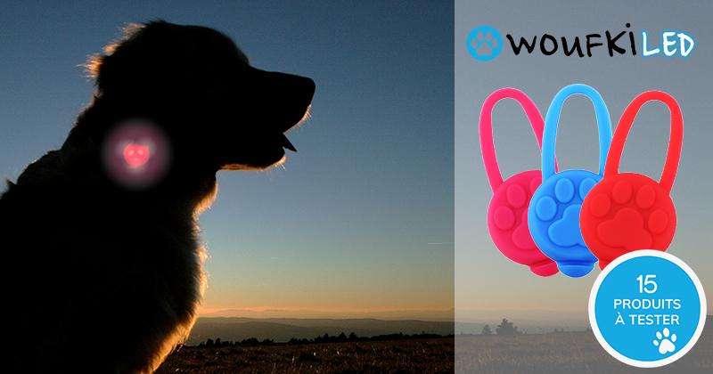 Testez gratuitement WOUFKI LED avec votre chien