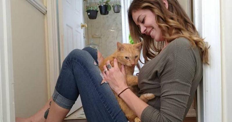 Perdu pendant 536 jours, ce chat a sauté dans les bras de sa maîtresse comme s'ils ne s'étaient jamais quittés