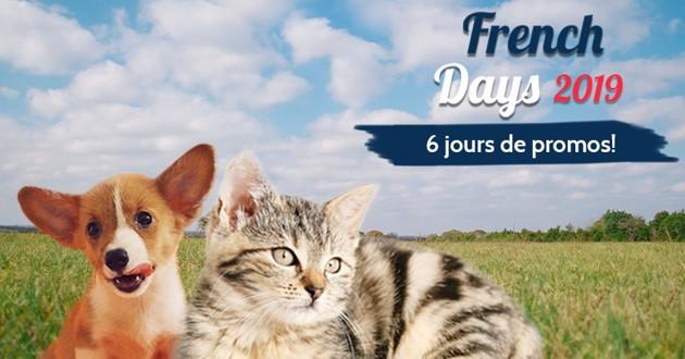 French Days avec un chien et un chat