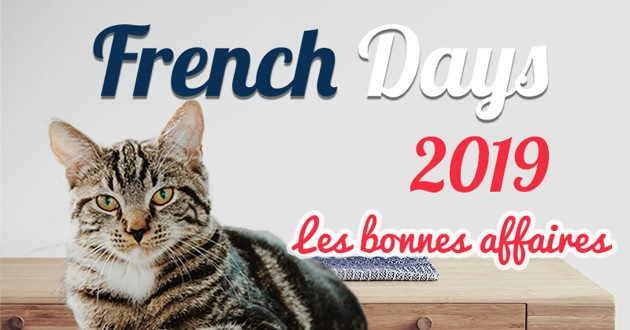 French Days chat