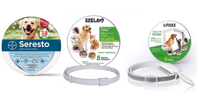 Colliers antiparasitaires pour chien